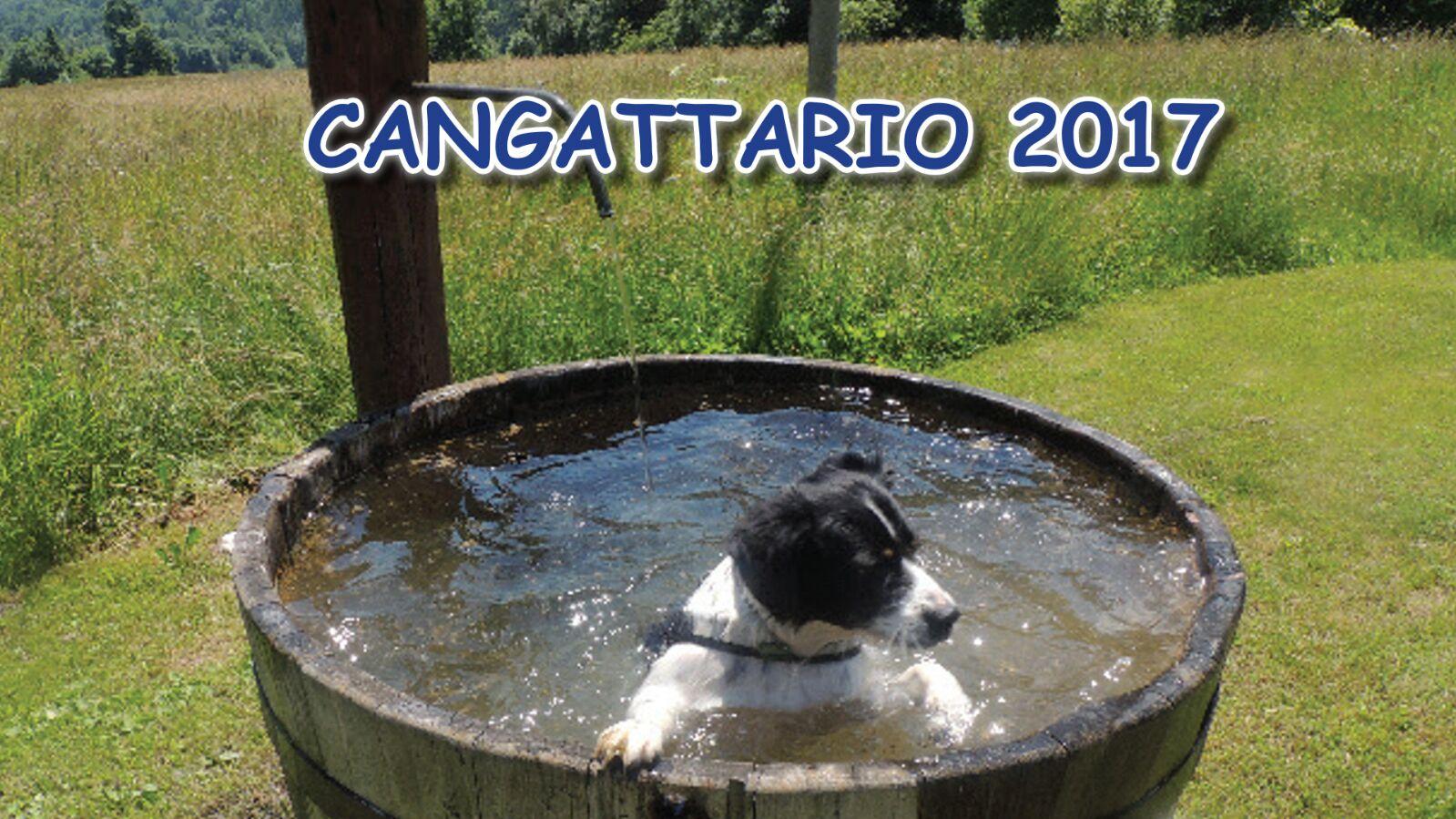 CANGATTARIO 2017