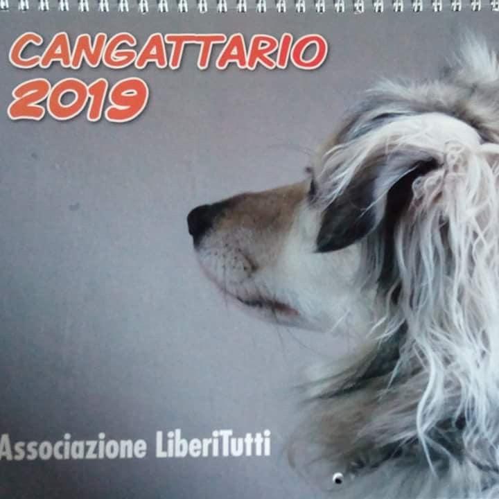 E' ARRIVATO IL CANGATTARIO 2019 !!!!!