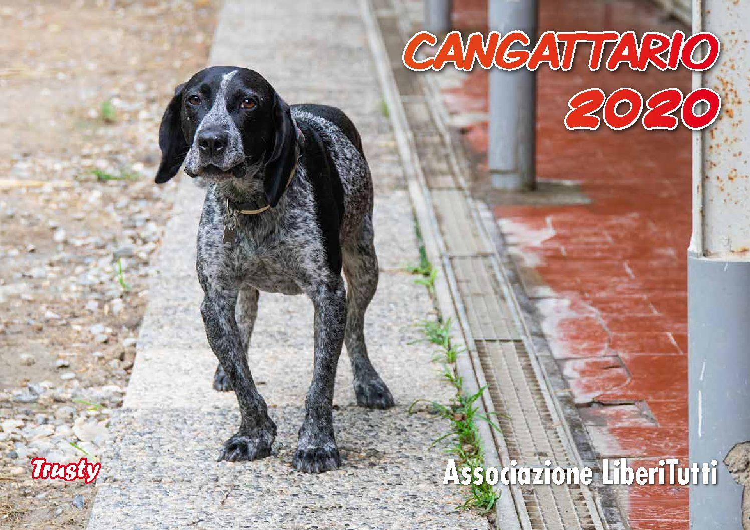 E' ARRIVATO IL CANGATTARIO 2020….!!!!!!