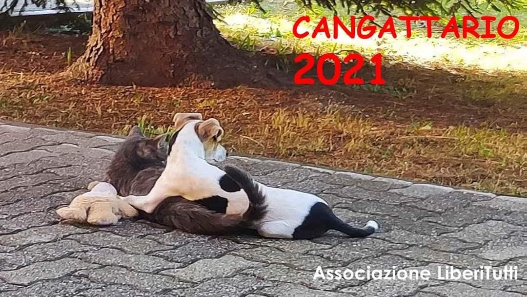 E' ARRIVATO IL CANGATTARIO 2021….ancora più bello!!!